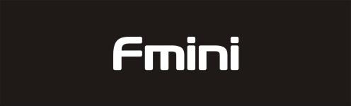 Fmini